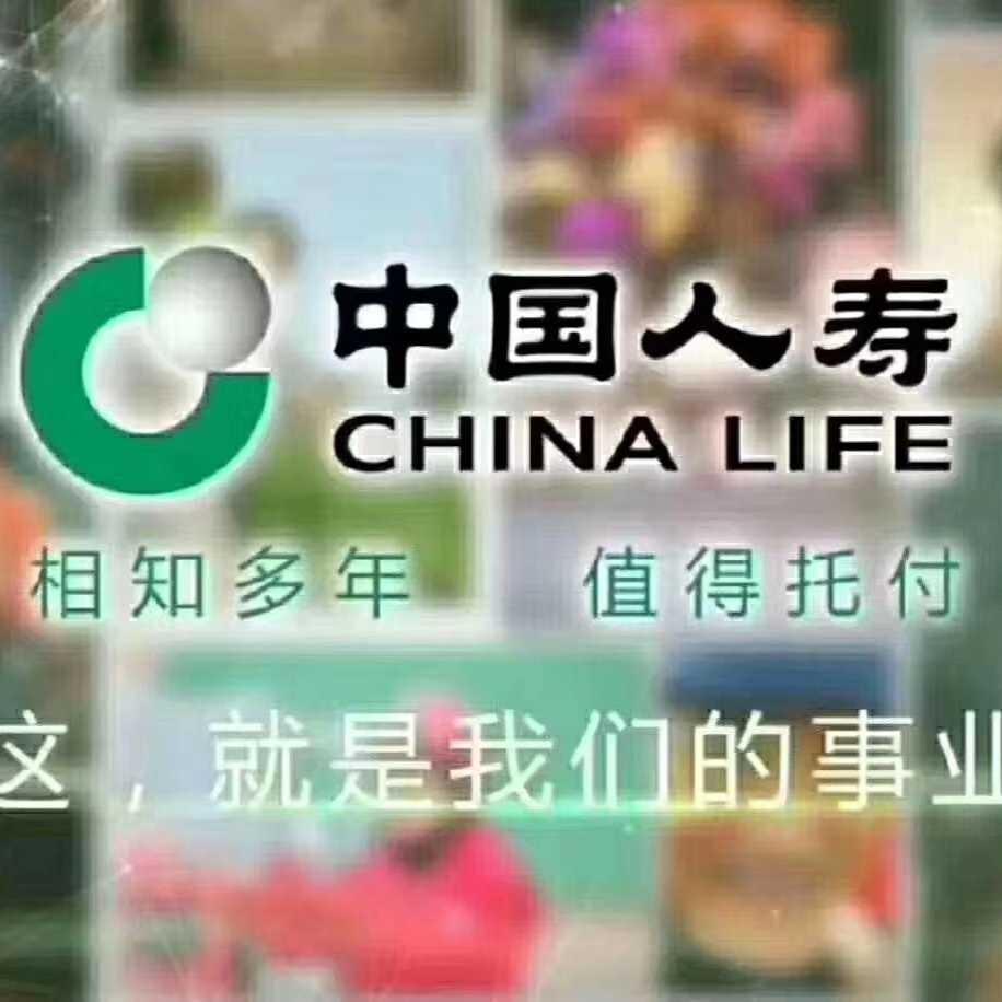 中国人寿百色分公司